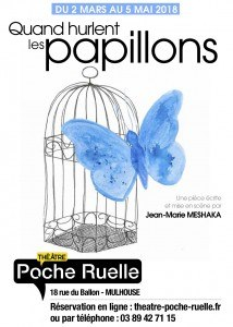 PAPILLONS 1 copie
